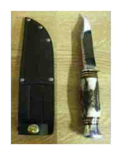 "4"" Bowie Knife With Stag Handle - Whittle Tang"