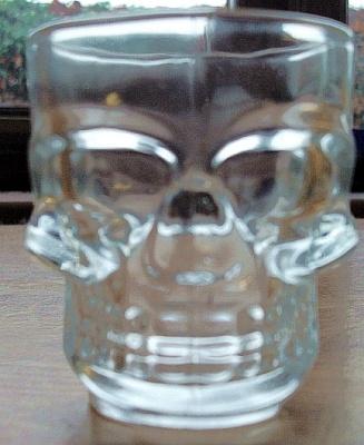Shot Glasses (Pair) Skull Design